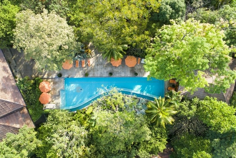 About The Bodhi Tree Yoga Resort