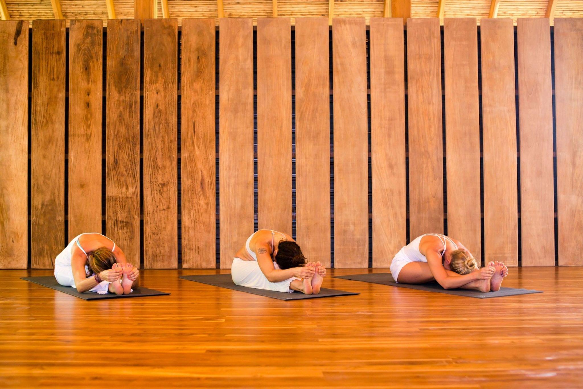 Yoga Collective Nosara 200 Hour Foundational Yoga Teacher Training 2019 Bodhi Tree Yoga Resort